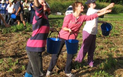Helping the environment can make you want to sing!