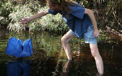 Steve O'Halloran setting fish trap