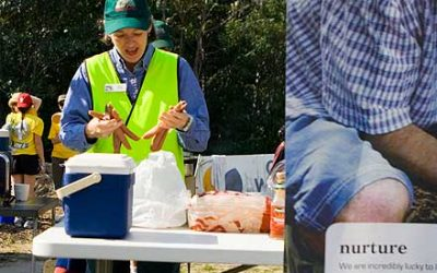 Traditional sausage sizzle
